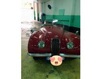 Jaguar de collection